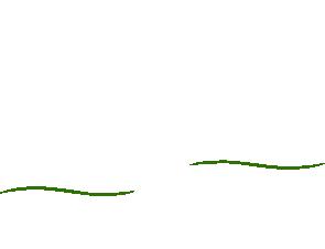 Kinderarztpraxis Schwanenkolonie